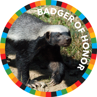 Badger of Honor image