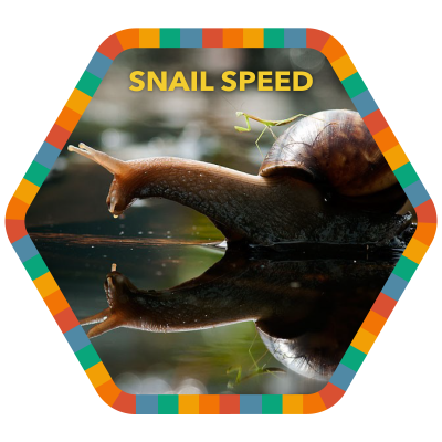 Snail Speed