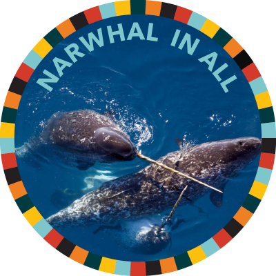 Narwhal In All image