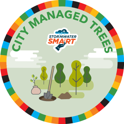 City-Managed Trees