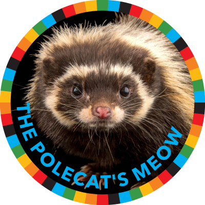 The Polecat's Meow