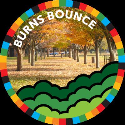 Burns Bounce