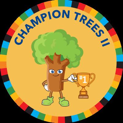 Champion Trees II
