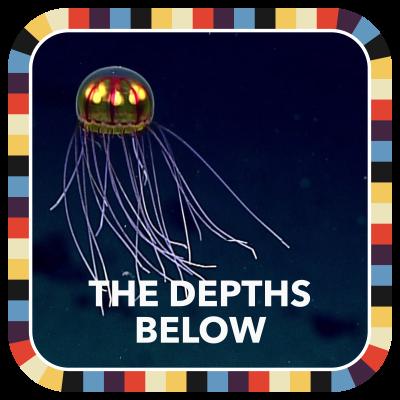 The Depths Below