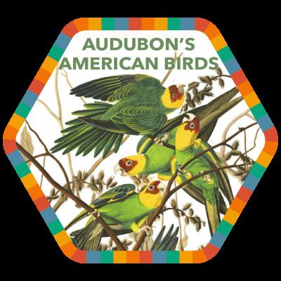 Audubon's American Birds