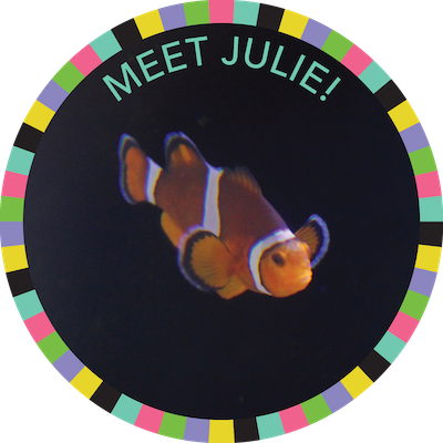 Meet Julie!