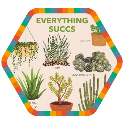 Everything Succs