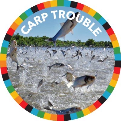 Carp Trouble