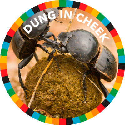 Dung In Cheek