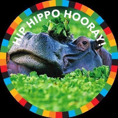 Hip Hippo Hooray!