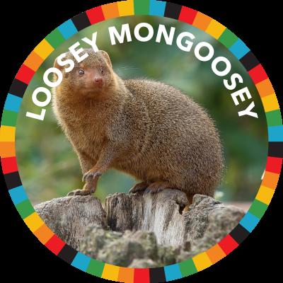 Loosey Mongoosey