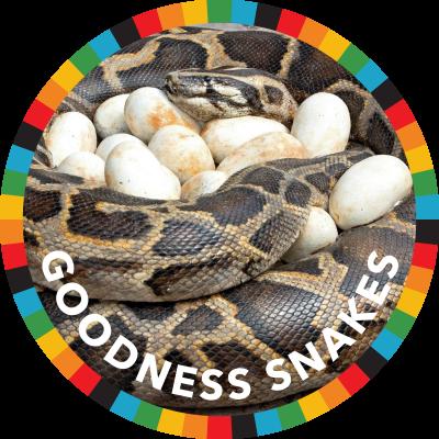 Goodness Snakes