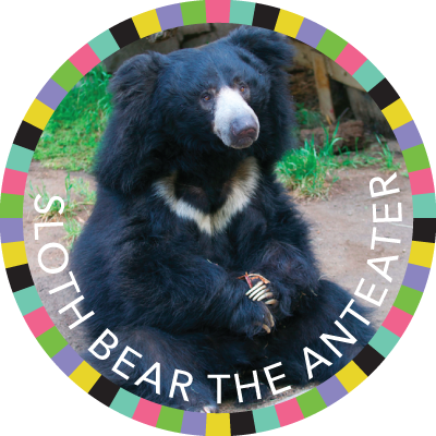 Sloth Bear the Anteater image