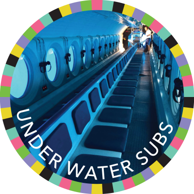Under Water Subs image