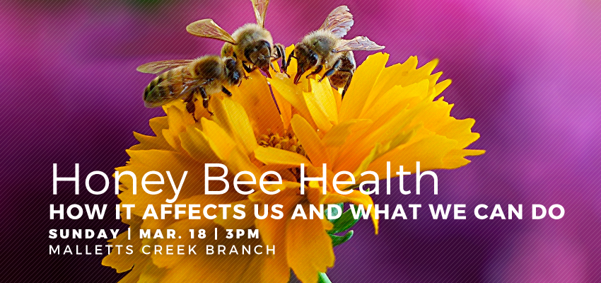 Honey Bee Health - March 18. .