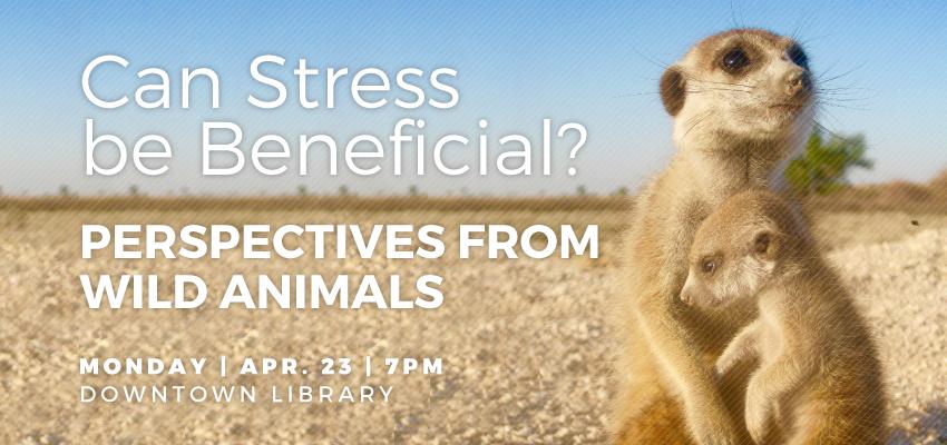 Stress - Monday, April 23. .