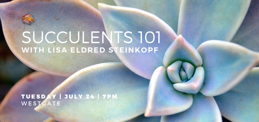 Succulents 101 - Tuesday, July 24. .