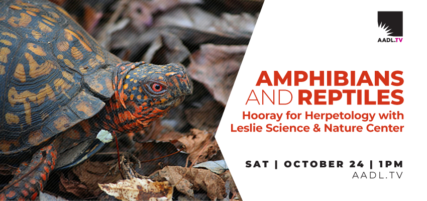 Hooray for Herpetology (10/24). .