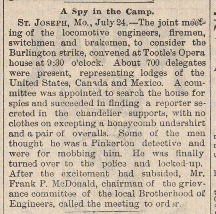 A Spy In The Camp image