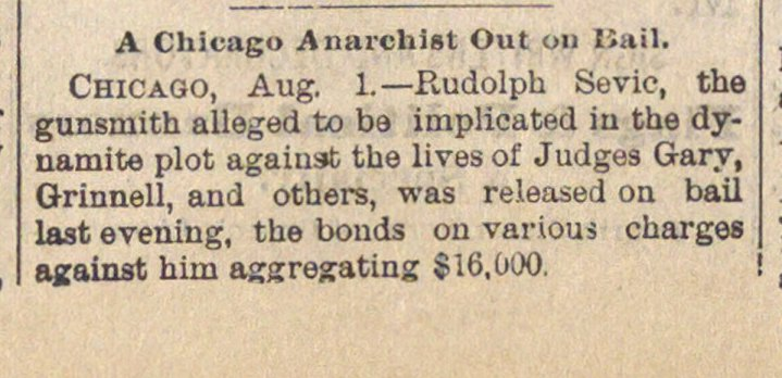 A Chicago Anarchist Out On Bail image