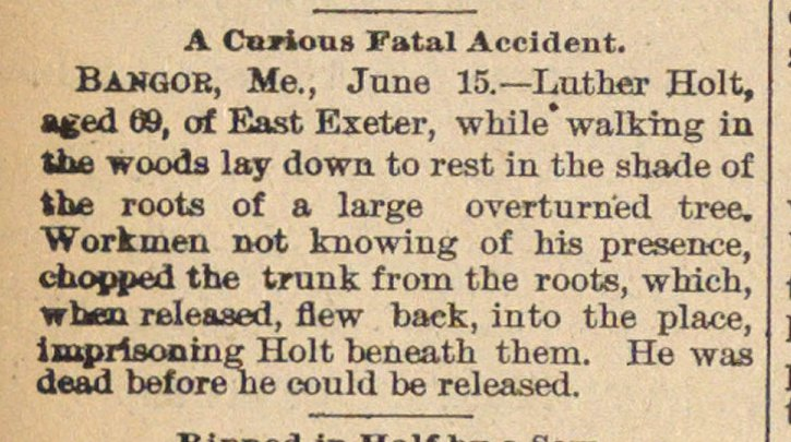 A Curious Fatal Accident image