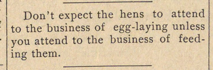 Don't expect the hens to attend to the b... image