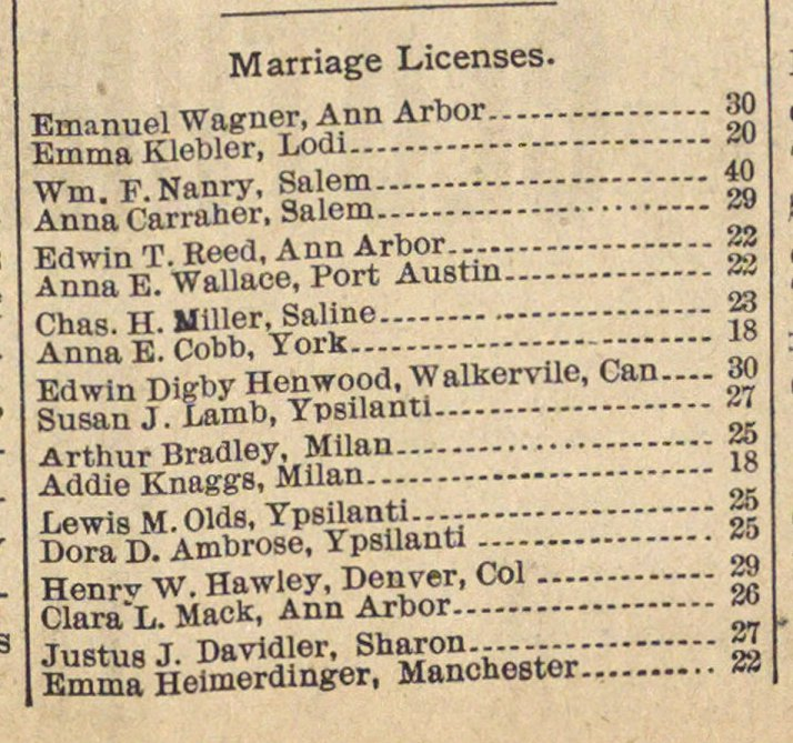 Marriage Licenses. image