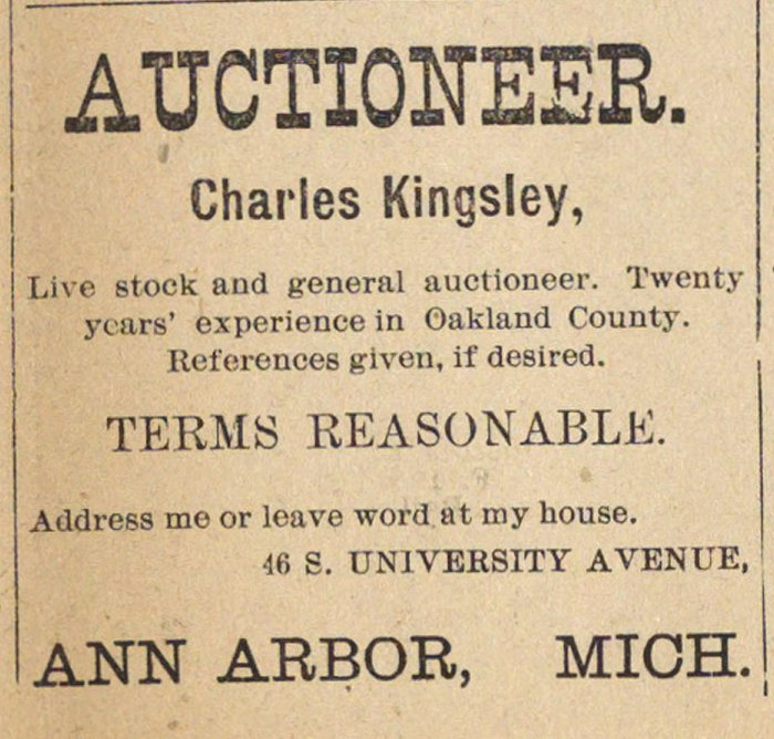 Auctioneer image