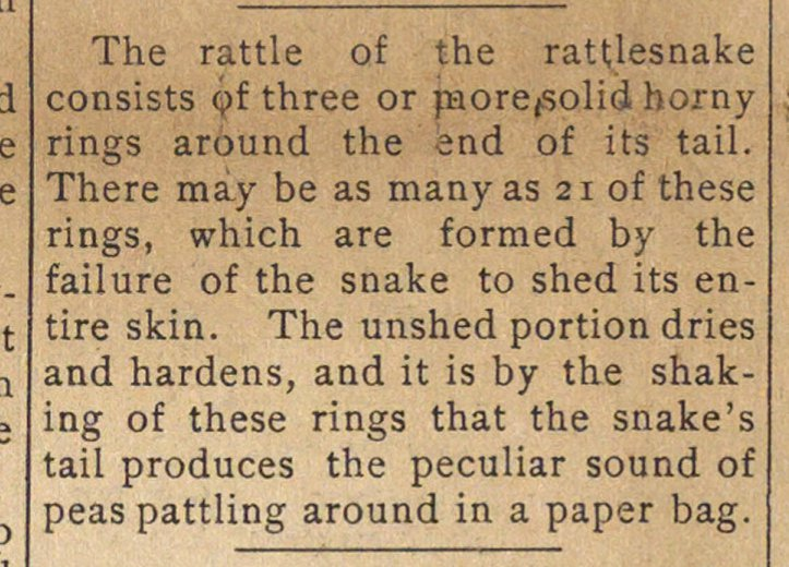 The rattle of the rattlesnake consists j... image