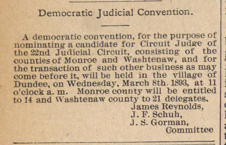 Democratic Judicial Convention image