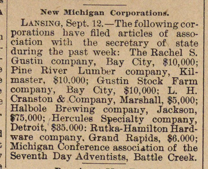 New Michigan Corporations image