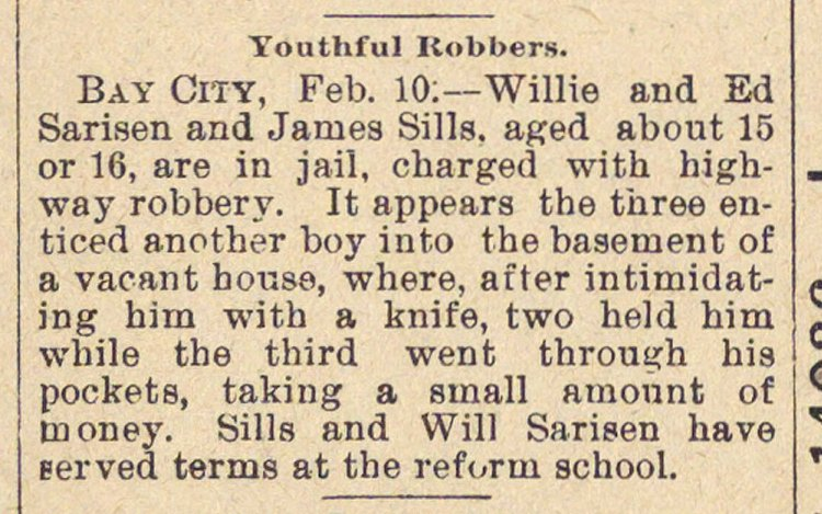 Youthful Robbers image