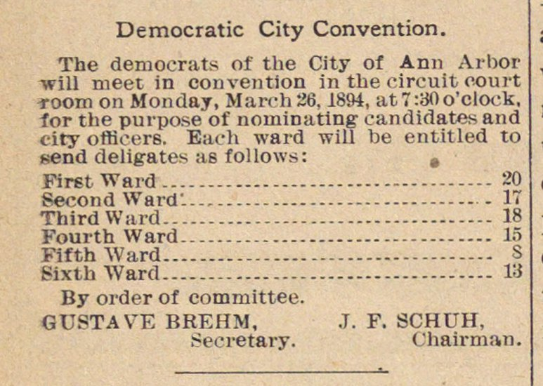 Democratic City Convention image