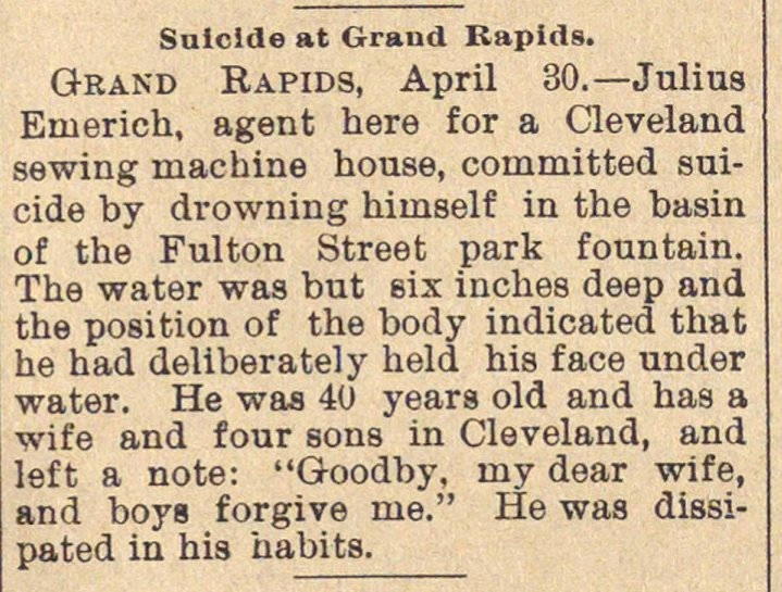 Suicide At Grand Rapids image