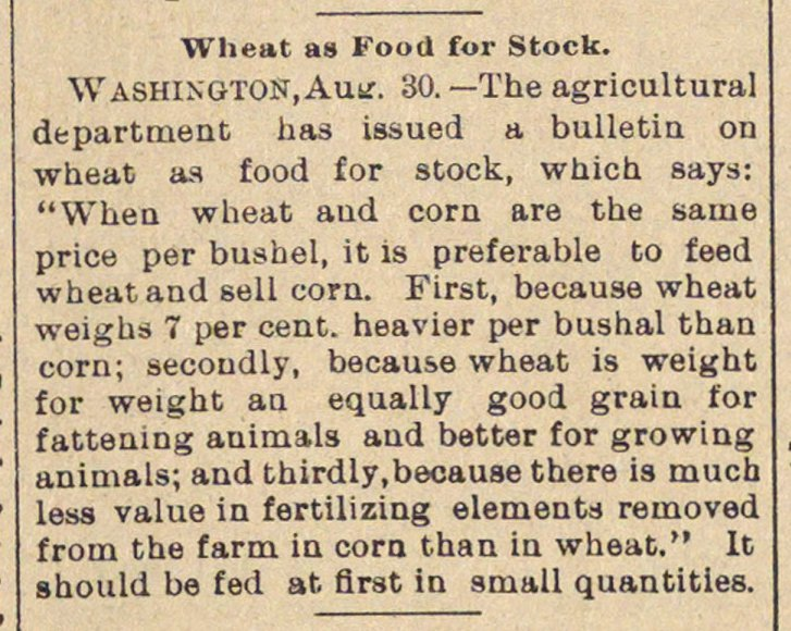 Wheat As Food For Stock image