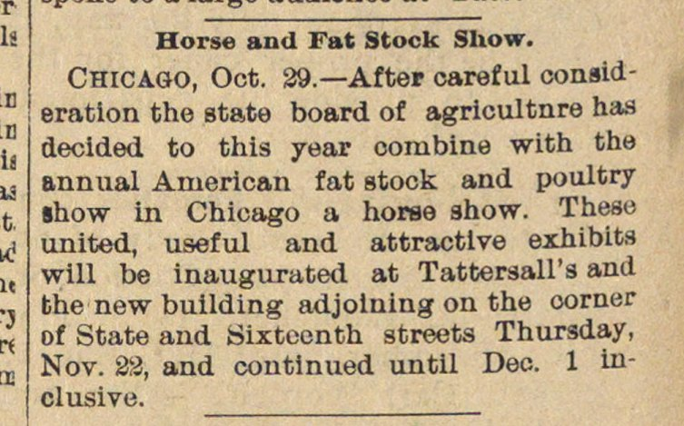 Horse And Fat Stock Show image