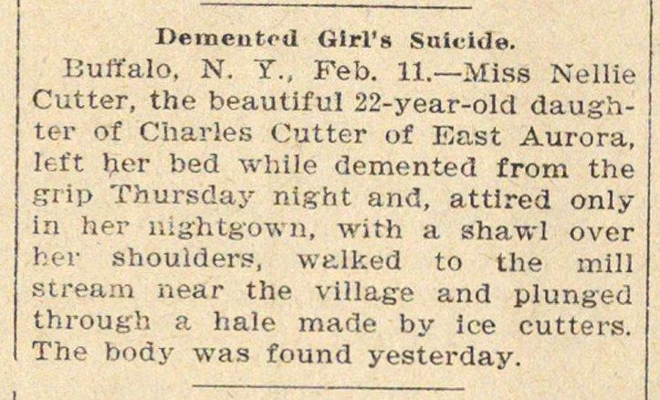 Demented Girl's Suicide image
