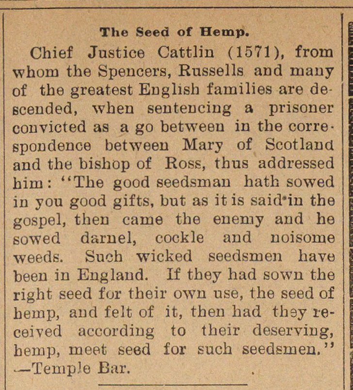 The Seed Of Hemp image