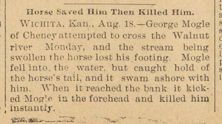 Horse Saved Him Then Killed Him image
