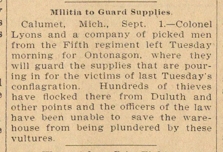 Militia To Guard Supplies image