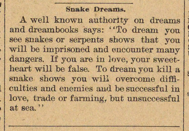 Snake Dreams image