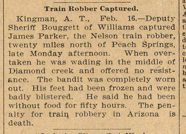 Train Robber Captured image