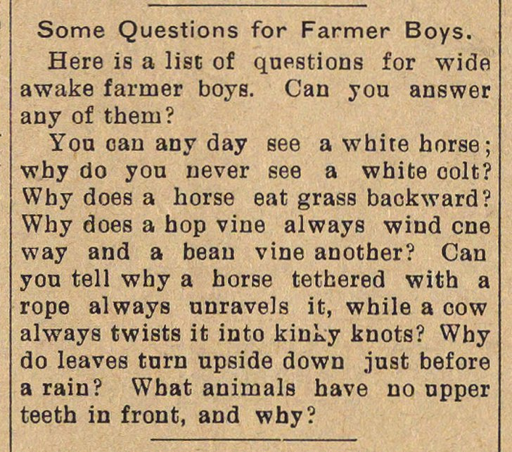 Some Questions For Farmer Boys image