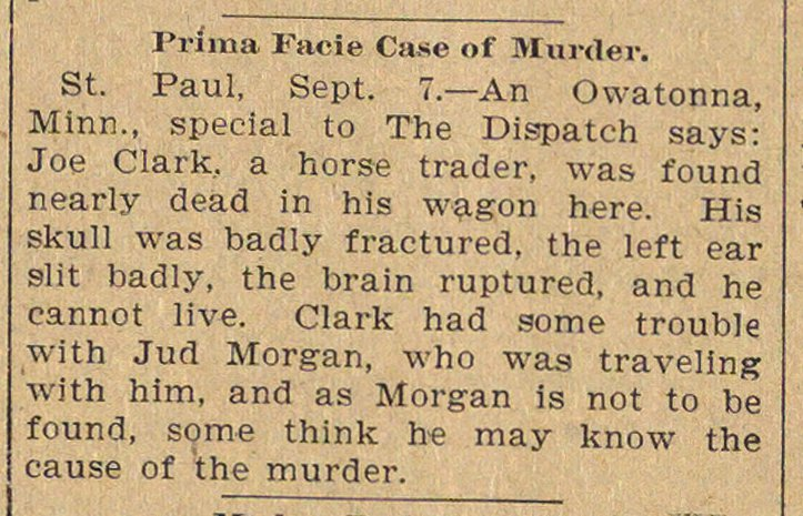 Prima Facie Case Of Murder image