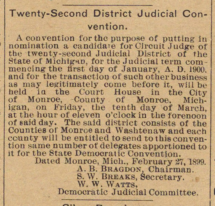 Twenty-Second District Judicial Convention image