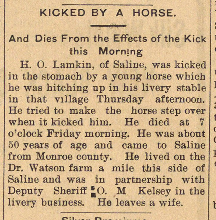 Kicked By A Horse image