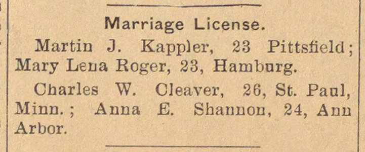 Marriage License image