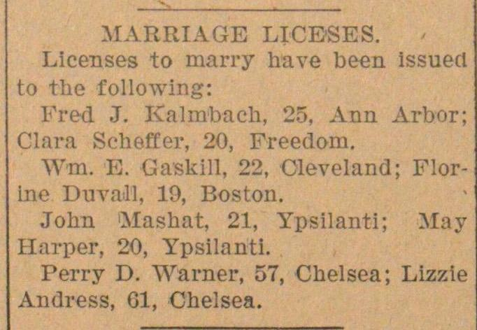 MARRIAGE LICESES. Licenses to marry have... image