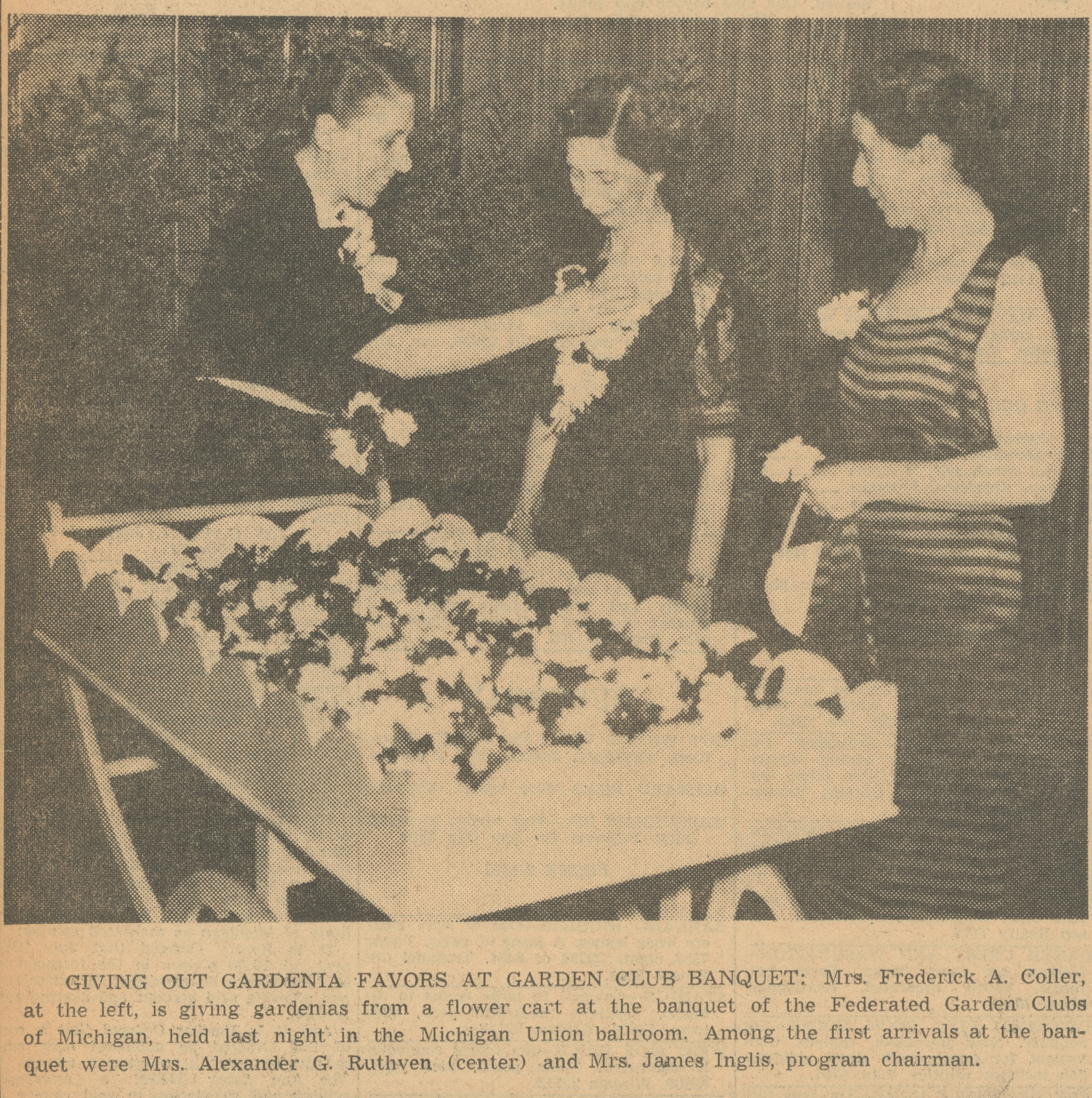 Giving Out Gardenia Favors At Garden Club Banquet image