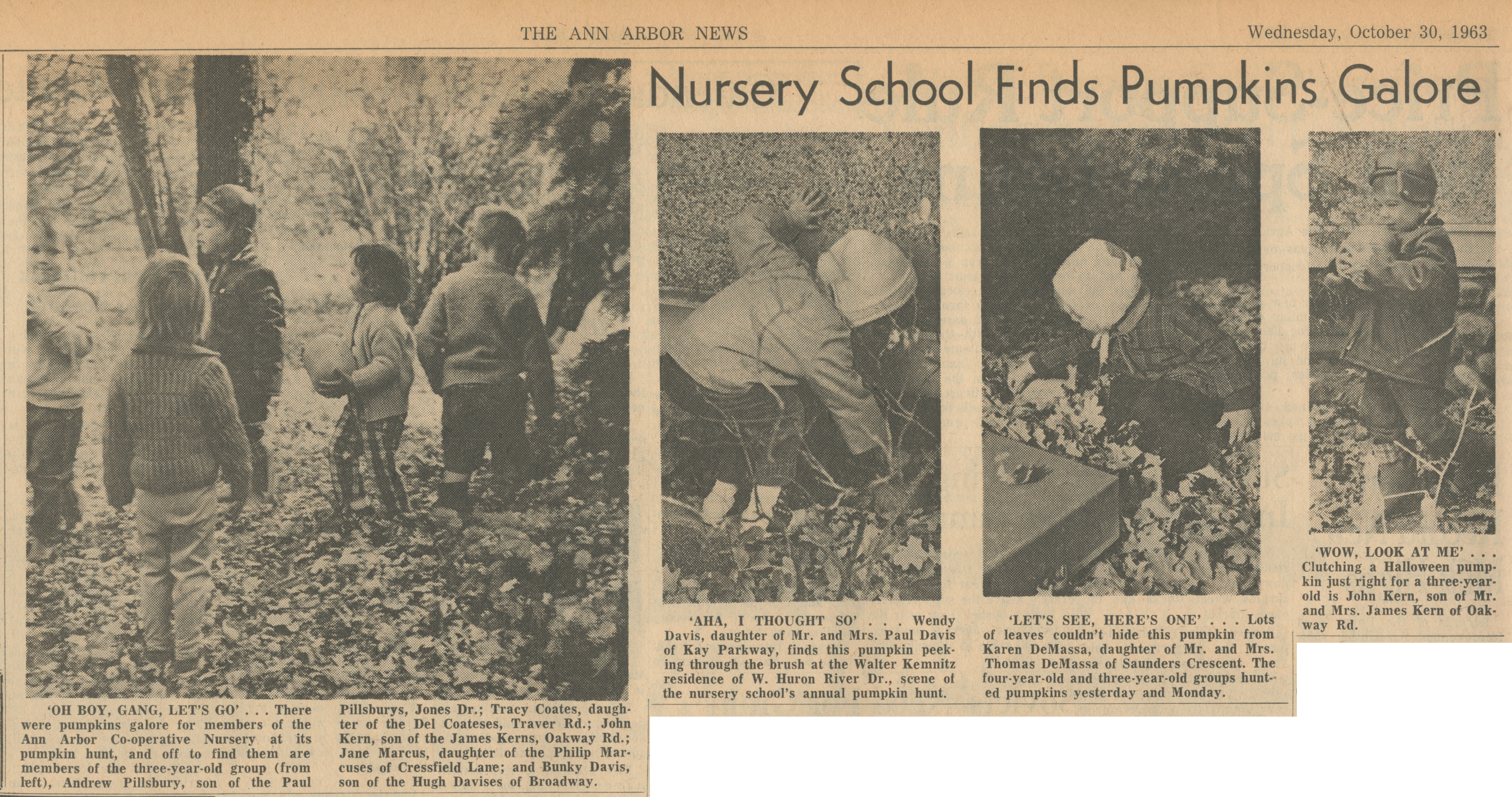 Nursery School Finds Pumpkins Galore image